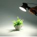 Wansen W2 - Набор из 2х осветителей для предметной фотосъемки